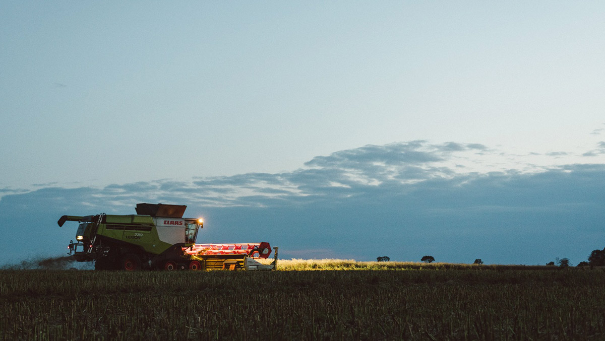 Agrargenossenschaft Bartelshagen I e.G. - Pflanzen Produktion Ernte